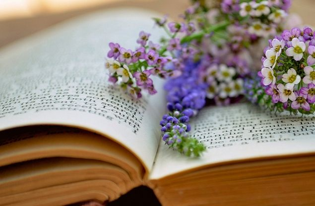 reminds me of all the flowers i have pressed between the pages of my old books...