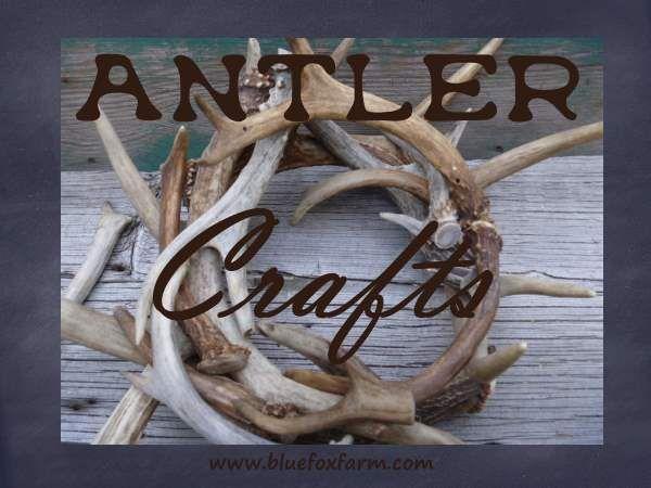 25 best ideas about antler crafts on pinterest deer for Antler decoration ideas