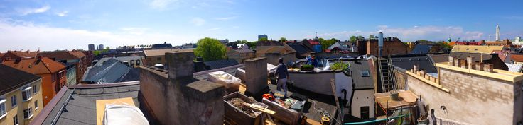 Masonry work. Roof tops Malmö, Sweden