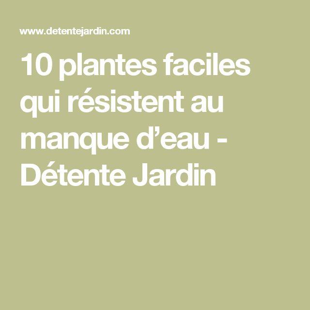 10 plantes faciles qui résistent au manque d'eau - Détente Jardin