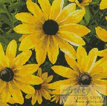 Black-eyed Susan Cross Stitch Pattern http://www.artecyshop.com/index.php?main_page=product_info&cPath=37_39&products_id=396