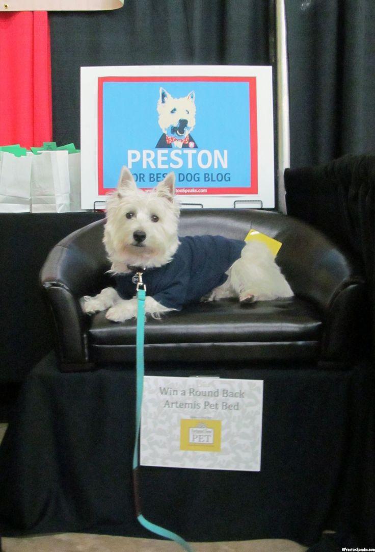 41 best Pet expo ideas images on Pinterest | San diego, Animal ...
