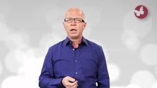 Videovorträge zum Thema Arbeit : Robert Betz