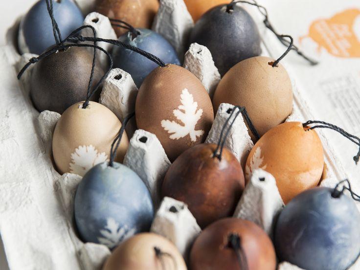 I ditt kylskåp finns lök, rödbeta, blåbär och annat som du kan använda för att färga ägg till ditt påskbord. Vi lär dig hur du enkelt gör finaste påskäggen.