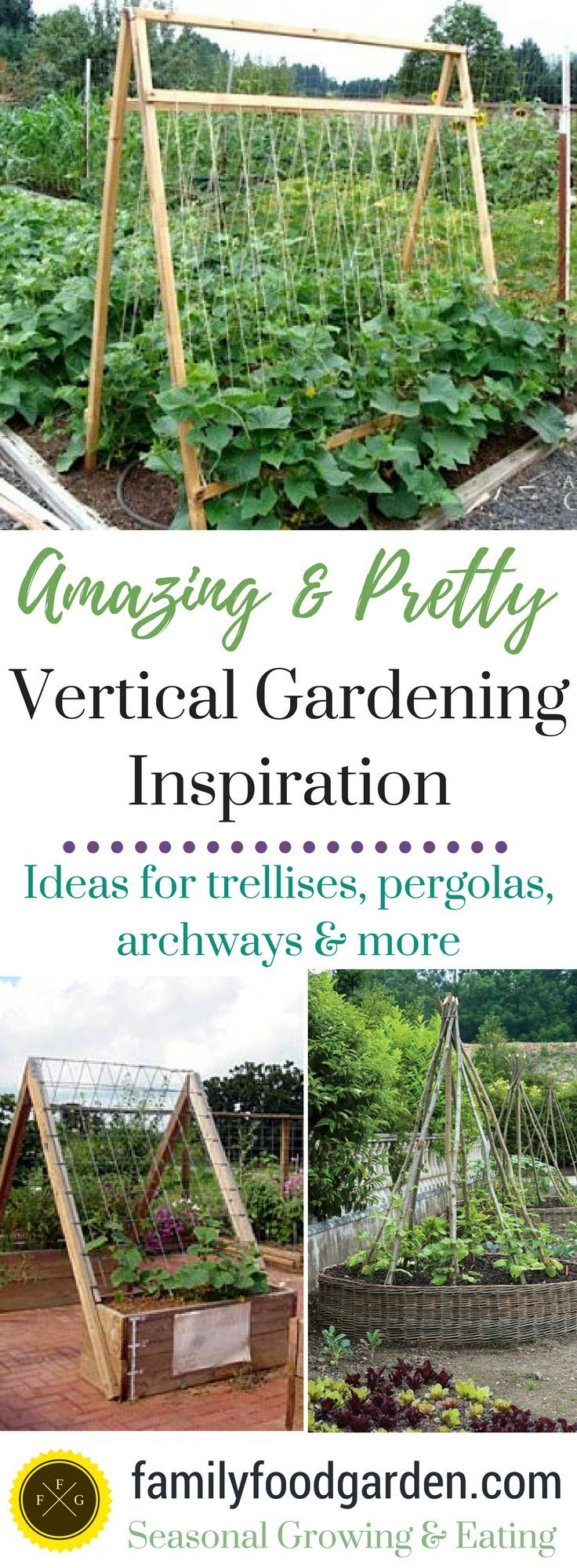 Vegetable gardening ideas - Amazing Vertical Gardening Ideas Vegetable