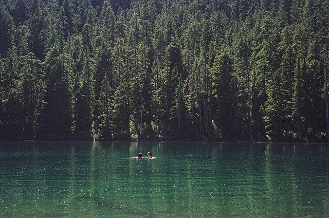 Forest lake  by Anna Verlet Shelton, via Flickr