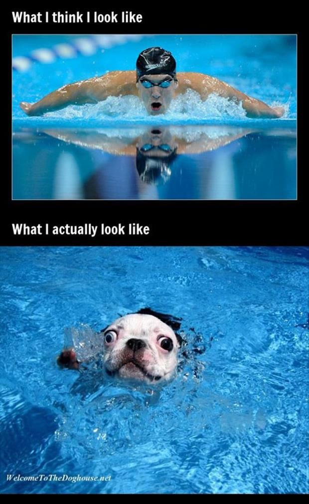 What u think u look like and what u actually look like in the 200 fly. This is too true.