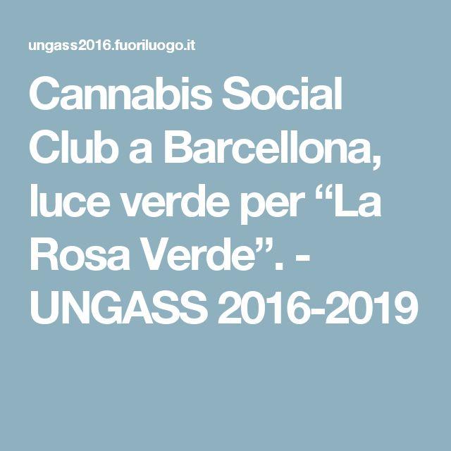 "Cannabis Social Club a Barcellona, luce verde per ""La Rosa Verde"". - UNGASS 2016-2019"