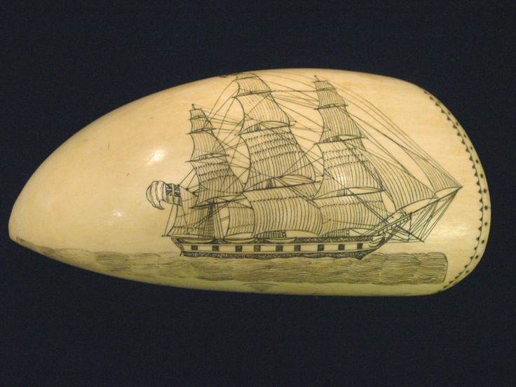 scrimshaw-tooth on sperme whale tooth