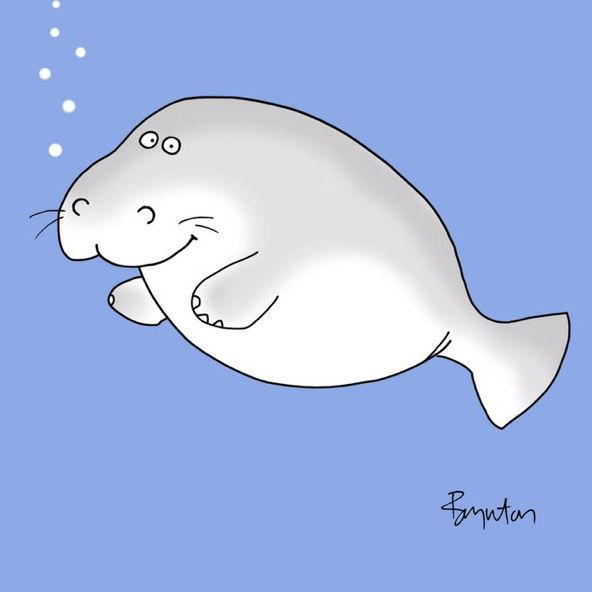 #ManateeAppreciationDay. And truly, which of us has not been guilty of taking manatees for granted? Sandra Boynton
