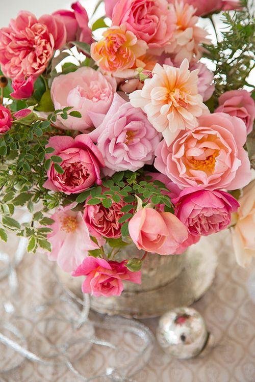 syflove: roses