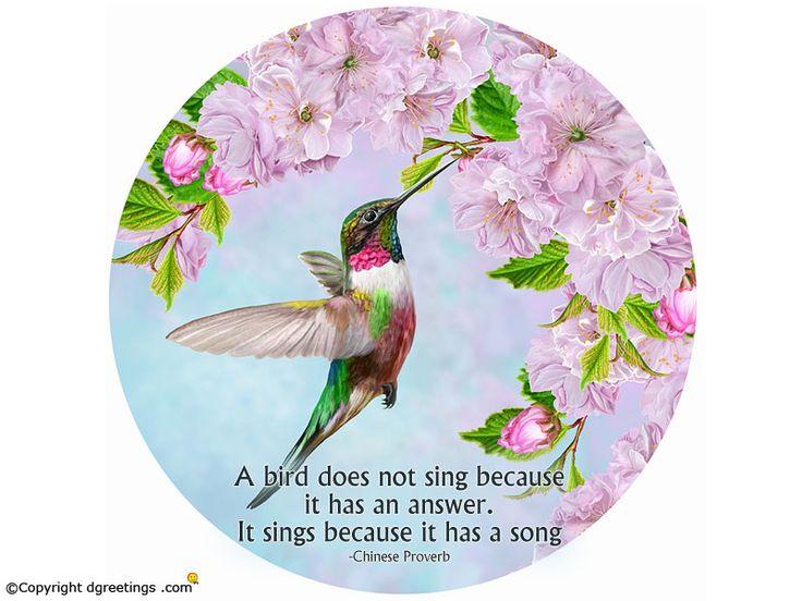 Download free Birds Wallpapers for your desktop.