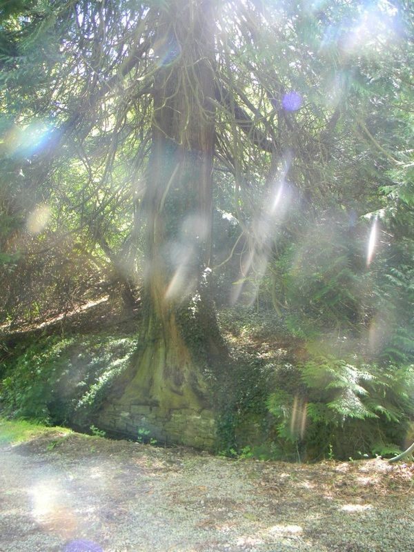 how to kill nature spirits