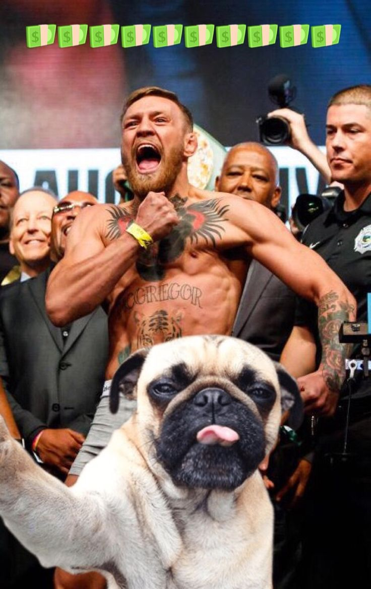 28 Best Mayweather Vs Mcgregor Ends In A Technical Knockout As