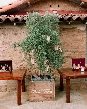 The Wish Tree... Symbolizes the planting of strong roots as you begin a new chapter in your life!...LOVE IT!