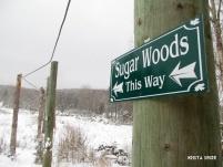 Nova Scotia Sugar Moon Farms maple walking trail