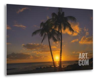 Palm Trees and Setting Sun, Kauai Hawaii Metal Print by Vincent James at Art.co.uk