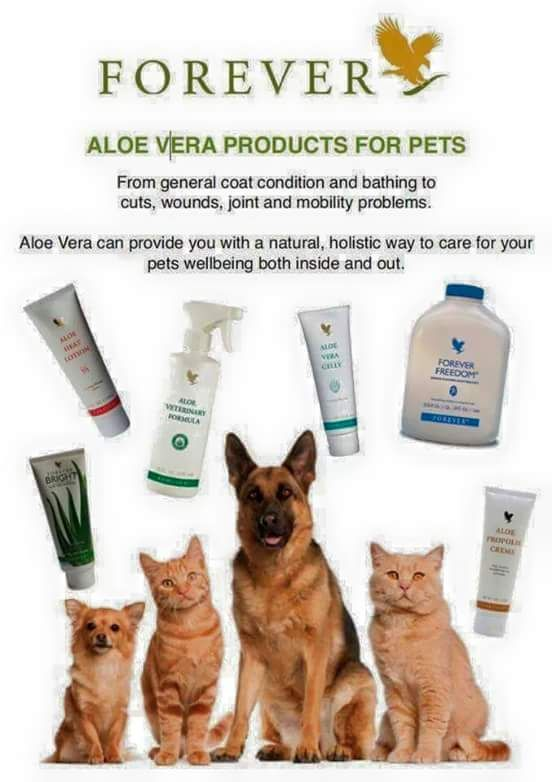 Natural quality products for our pets well-being. Contact for more info aloe4u-sboyd@flp.com buy online www.aloe4u-sboyd.flp.com