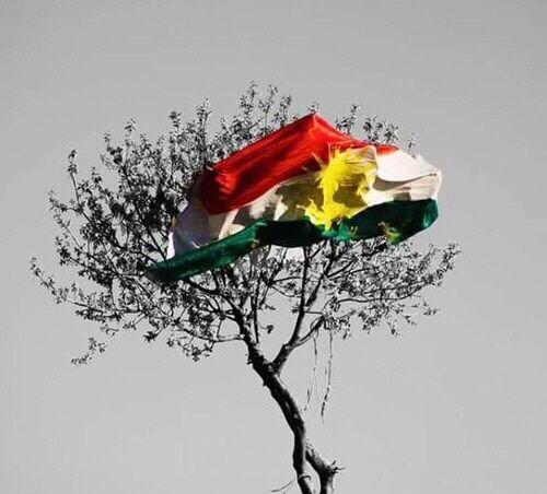 happy flag day kurdistan