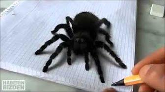 Desenho 3D de aranha!!!De arrepiar - YouTube