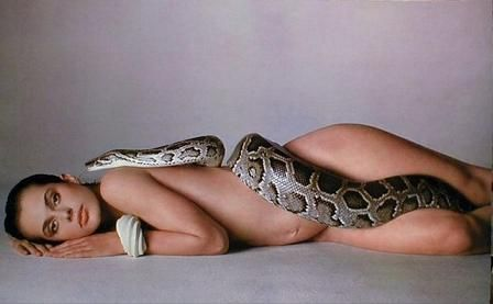 About one Burmese python with nude girl
