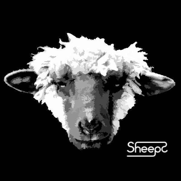 Sheeps Indie Pop Band - Pheel