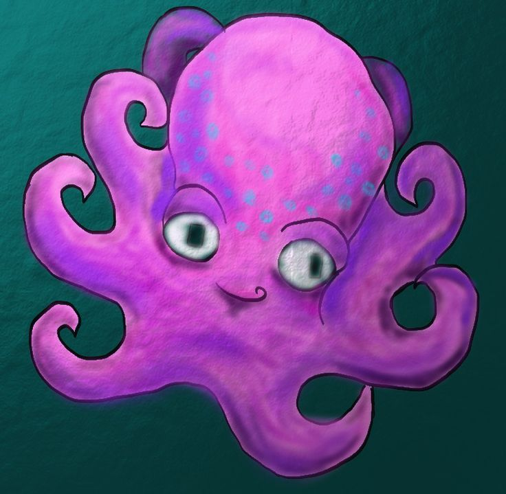 Octopus - February 26. 2014