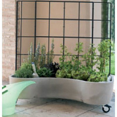 Marchioro Garden Products Sally Plus Garden Box with Self Watering Reservoir with Trellis 6525 Light Gray -- More info could be found at the image url.