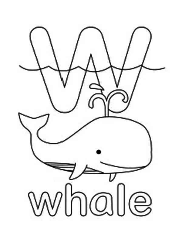 Letter W For Whale Coloring Page Whale Coloring Pages Witch