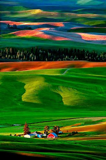 The Palouse is a region of the northwestern United States, encompassing parts of southeastern Washington, north central Idaho and, by some definitions, parts of northeast Oregon.