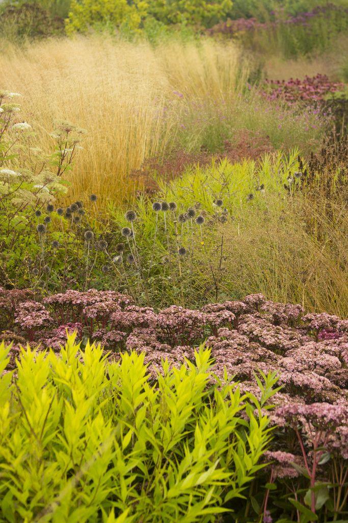 Vlinderhof garden designed by Oudolf, Netherlands - photo, Scott Weber