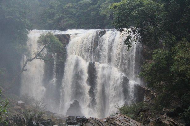 A trek to Dudhsagar falls, Karnataka!