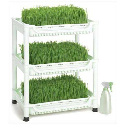Sproutman's Germoir pour herbe de blé