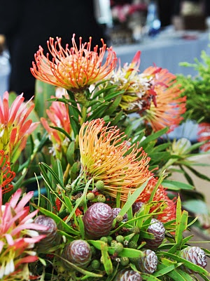 Flowers from Cape Town South Africa