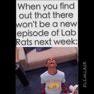 ^Lab Rats^ @labrats_13 Instagram photos | Webstagram - the best Instagram viewer