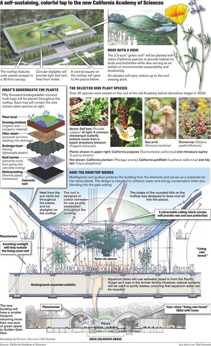 친환경 건축물 California Academy Of Sciences By Renzo Piano 2