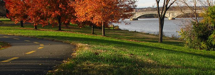 Lady Bird Johnson Park  There are excellent views of the National Mall's fireworks display from the park on Independence Day. Please note that the parking lot at the Columbia Island Marina will be reserved for slip holders from 6 am to 11 pm on July 4. Extra parking will be available in the nearby north parking lot of the Pentagon. There will also be many road closures in the area. These tips and tricks will help you plan your holiday visit.