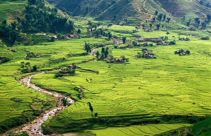 Шапа (Sa Pa, Вьетнам) — тихий горный городок и отдельные коммуны в северном Вьетнаме. Большинство населения живет в округе города в небольших поселениях и занимаются обработкой рисовых полей на склонах террасы.