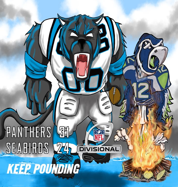 Carolina Panthers vs. Seattle Sea Hawks in the Divisional Round of the NFL Playoffs