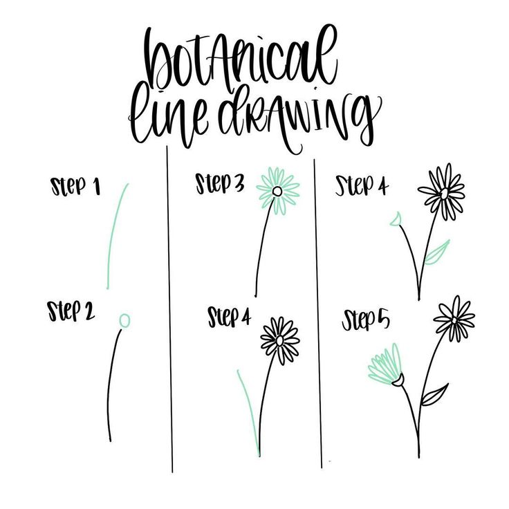 "step-by-step daisy doodle | 1,525 Likes, 18 Comments - Peggy Dean (@thepigeonletters) on Instagram: ""Here's a quick line flower step-by-step. P.S. Ignore how Step 4 is listed twice. . . .…"""