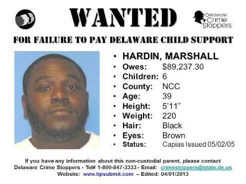 DHSS' Division of Child Support Enforcement's Most Wanted List for 2013. These are non-custodial parents who owe $5,000+, haven't paid for more than six months, and have an active Family Court Capias. DCSE Website: www.dhss.delaware.gov/dcse