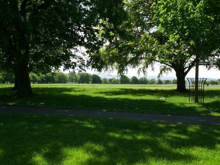Phoenix Park - Gorgeous urban park right outside of #Dublin