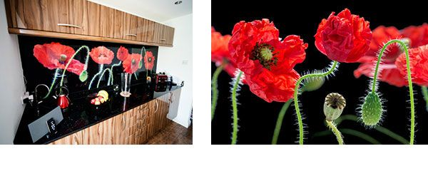 Poppies Glass Splashback