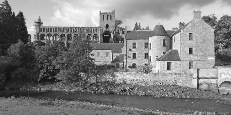 jed abbey