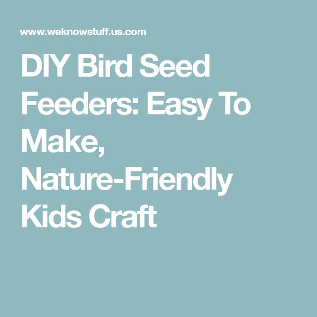 DIY Bird Seed Feeders: Easy To Make, Nature-Friendly Kids Craft