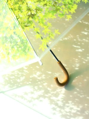 Beautiful idea for an umbrella, sunshade. The leaf print on the transparent panels creates a leaf-like shade where ever you go! Perfect for rainy days as well.  密買東京|木漏れ日傘|商品詳細 (木漏れ日傘 -Design Complicity × usual design-) 雨の日が楽しくなりそお☆