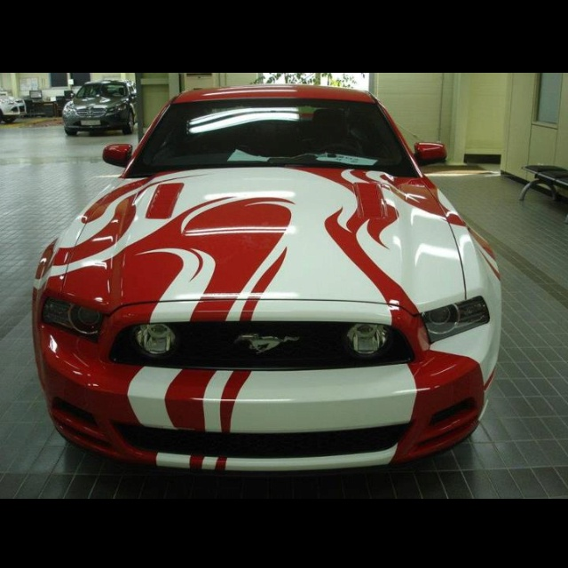 GORGEOUS artwork on this 2013 Mustang GT!