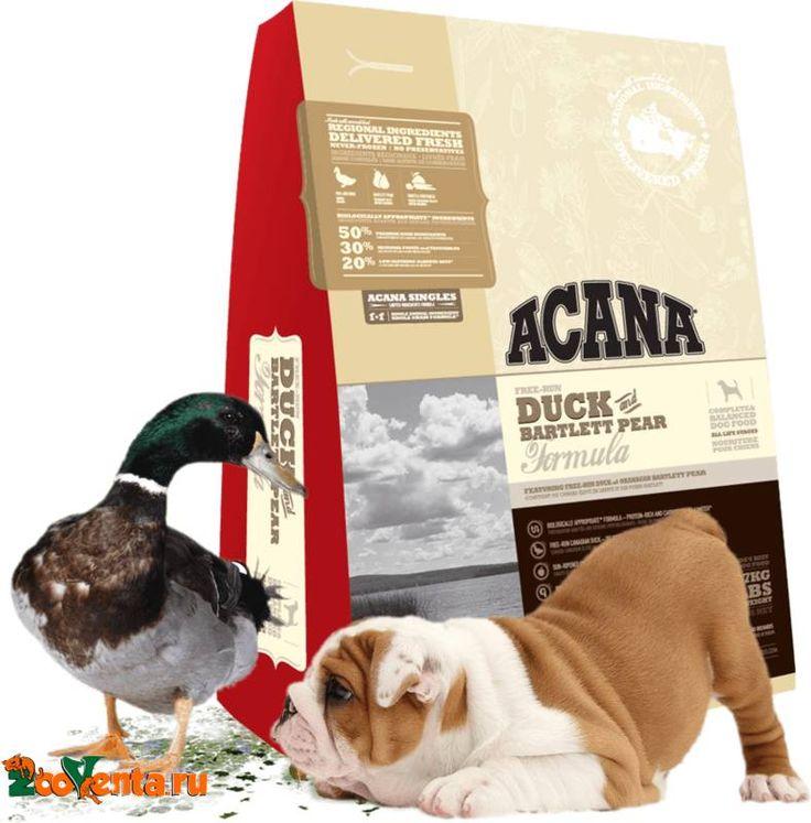Сухой корм Acana Duck & Pear для собак с уткой и грушей в интернет магазине ZooVenta.ru
