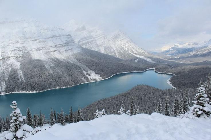 Lake Peyto, Alberta, Canada