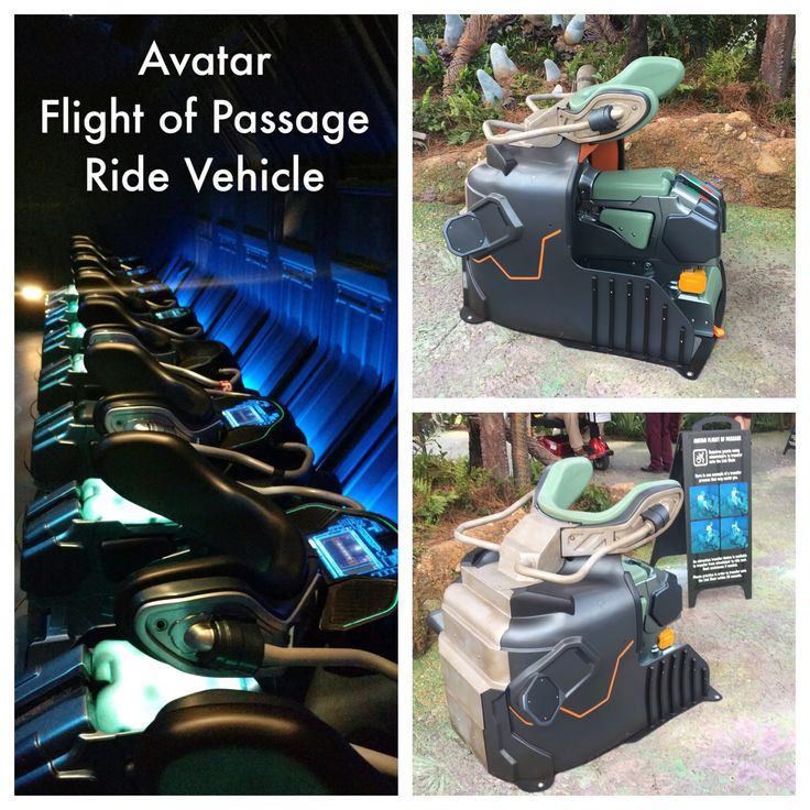 Avatar Flight of Passage ride vehicle / Pandora - World of Avatar / Disney World